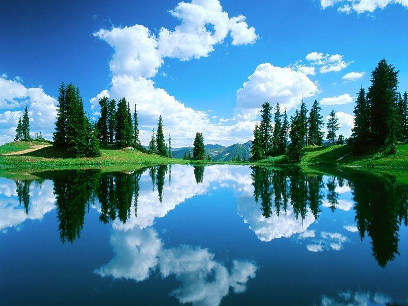 تصاویر زیبا از انعکاس طبیعت در آب