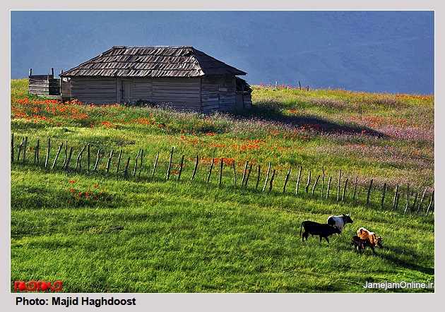 طبیعت زیبای روستای سوباتان
