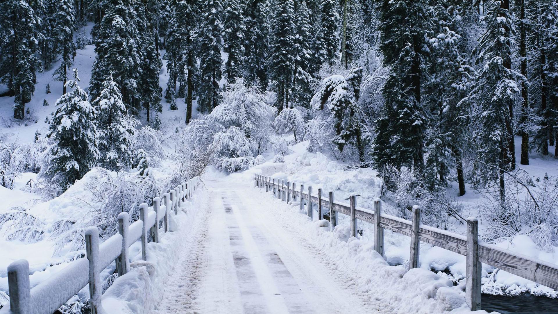 تصاویر زیبا از طبیعت دل انگیز