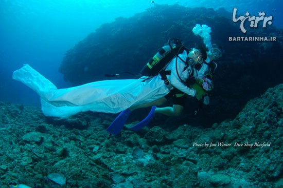 عکس مراسم عروسی در زیر آب دریا