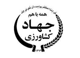 ایران از واردات تن ماهیان بی نیاز می شود