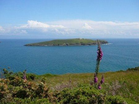 تصاویر جزیره اختصاصی افراد مشهور