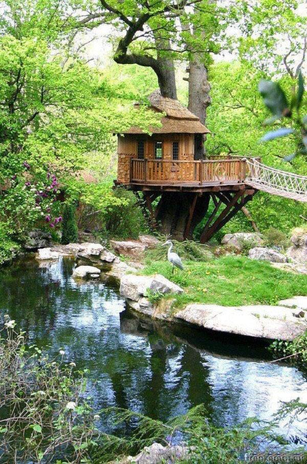 تصاویر زیباترین خانه های درختی