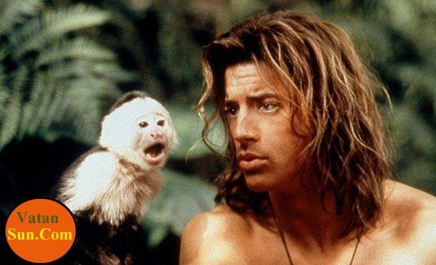 مشهورترین میمون جهان +تصاویر