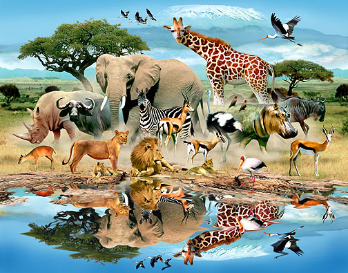دانستنی هایی در مورد حیوانات که نمی دانستید !!