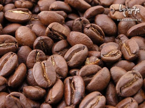 گران ترین قهوه دنیا از بد جایی می آید!