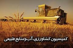 قیمت خرید تضمینی گندم عقلانی نیست