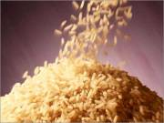وزارت صنعت، تصمیمهای وزارت جهاد کشاورزی را اجرا نمیکند