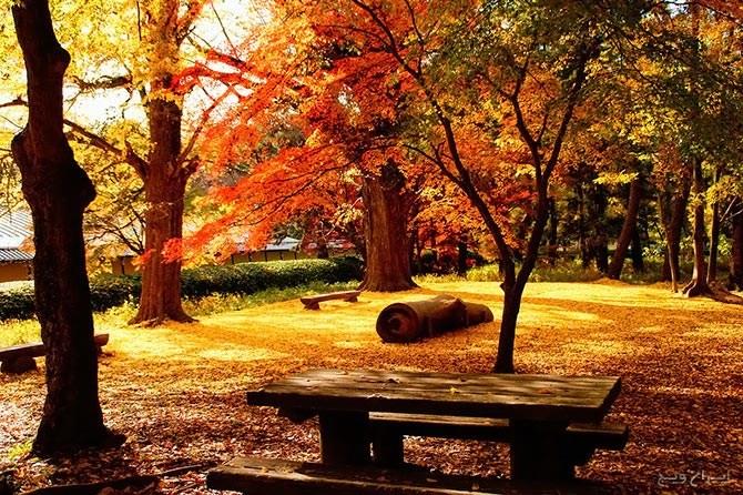 عکس+منظره+پاییزی+زیبا