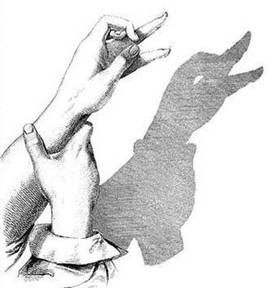 آموزش هنر سایه بازی با دست