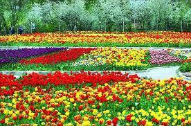 برگزاری پنجمین نمایشگاه ملی کشاورزی و گل و گیاه در اراک