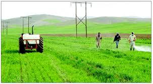 جای خالی تعاونی کشاورزی در روستاهای ایران
