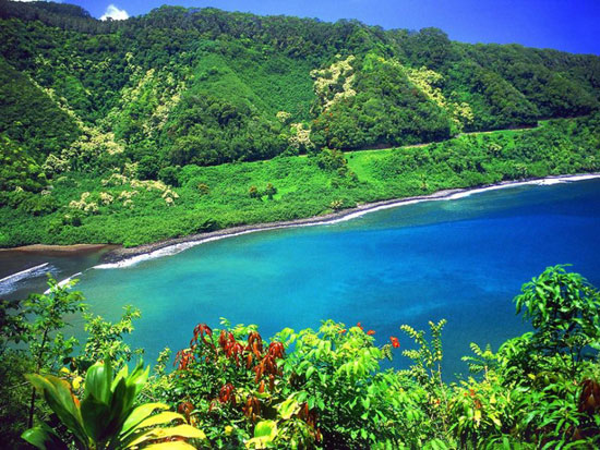 زیبایی های این جزیره شما را دیوانه می کند