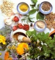 فرآوری گیاهان دارویی رونق بازار فروش را بهدنبال خواهد داشت
