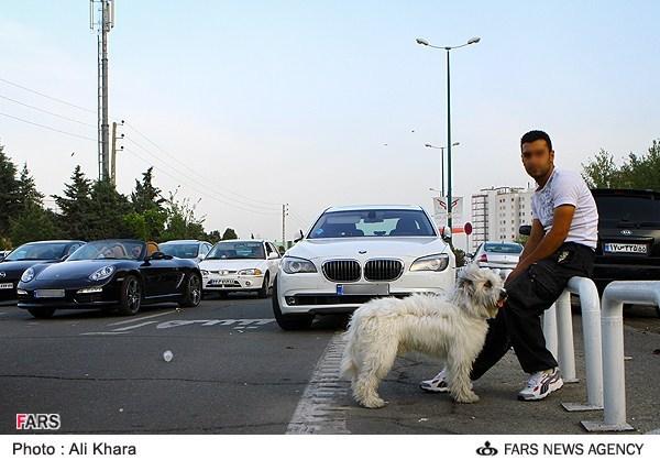 گذری موقت در پایتخت