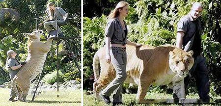 تصاویر بزرگترین حیوانات دنیا