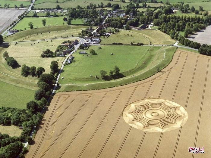 عکس های خلاقانه و دیدنی از طراحی مزارع