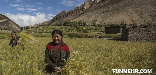 ازدواج همزمان زنی با دو برادر در نپال+ عکس