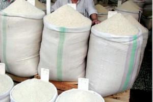 دولت برنج وارد نکرده است