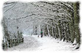 بارش برف کلاردشت در ابهام