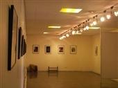 نمایشگاه نقاشی در نگارخانه شماره ۲ هنر ایران