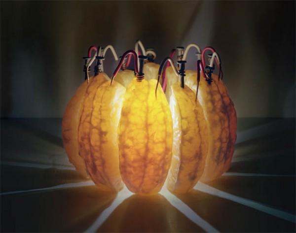 تولید برق از پرتقال ؟!