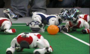 برترین رباتهای سومین دوره مسابقات رباتیک معرفی شدند