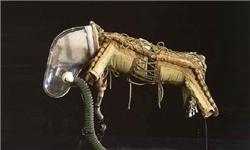 لباس برای سگهای فضانورد + تصاویر