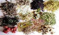 داروهای گیاهی ترک اعتیاد دارای دوزهایی از تریاک هستند