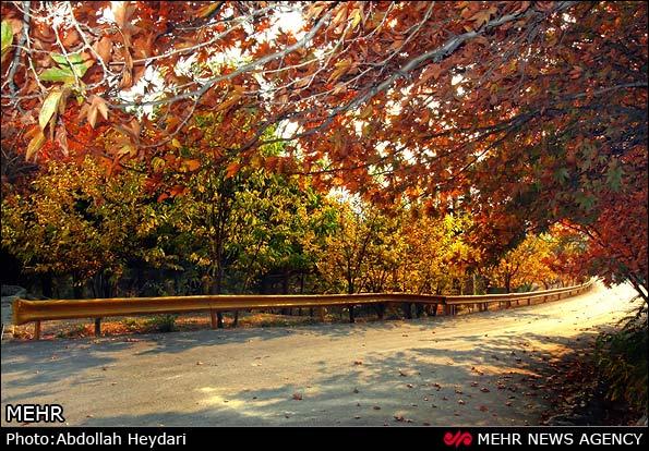 عکس از طبیعت تهران