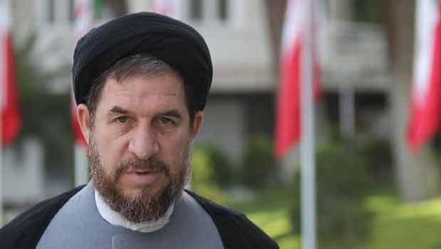میرتاج الدینی: آمادگی دولت برای تنویر افکار عمومی