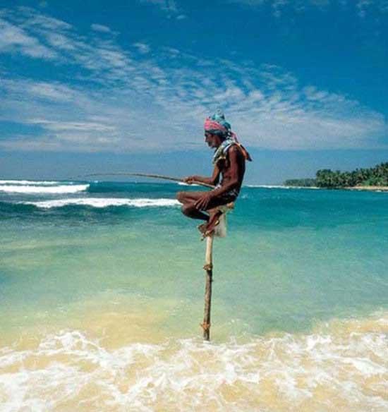تصاویر حیرت آور از حفظ تعادل
