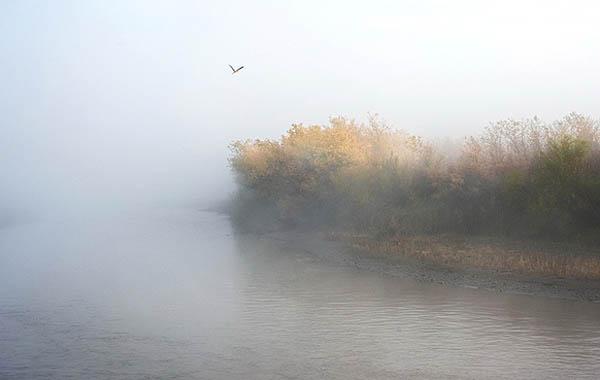 تصاویر پاییز چشم نواز ارس
