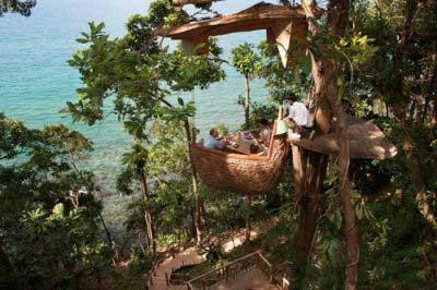 عکس های رستوران عجیب بالای درخت در تایلند