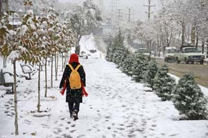 بارش برف و باران از عصر امروز در تهران