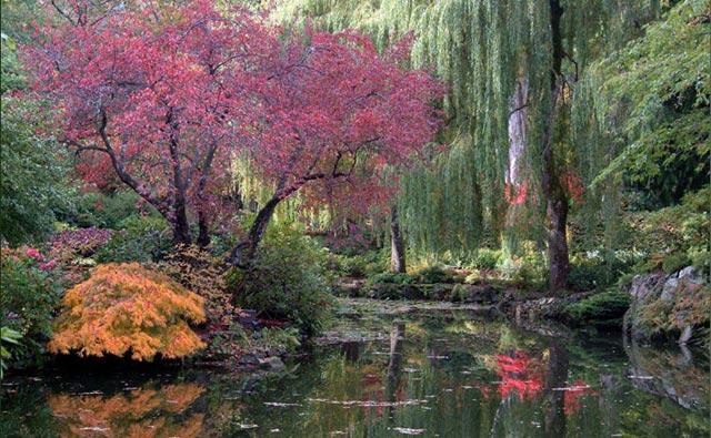 تصاویر زیباترین و بزرگترین باغ گل دنیا