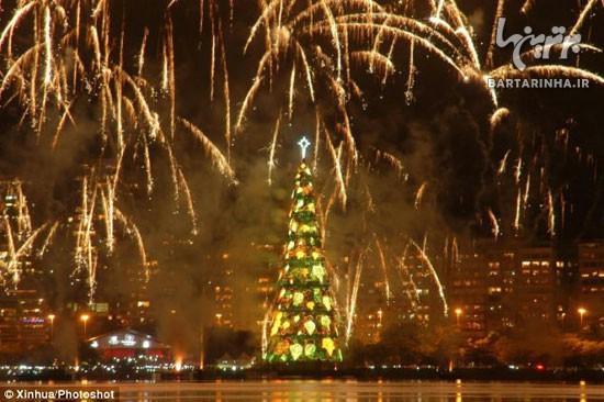 بزرگترین درخت کریسمس جهان +عکس