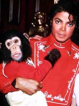 سرنوشت شمپانزه مایکل جکسون! + عکس