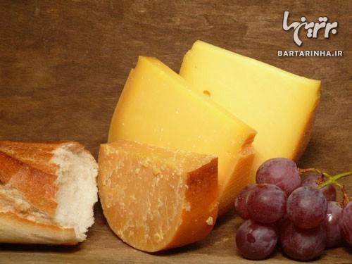 منوی پیشنهادی انواع پنیرهای خارجی