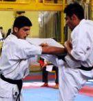 شقاقی بعنوان رییس انجمن سبک های آزاد کاراته منصوب شد