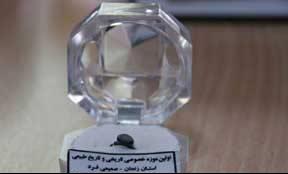 نمایش کوچکترین انگشتر دنیا در زنجان