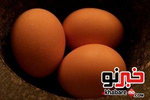 تخم مرغ را بشوریم یا نه؟؟