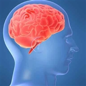صدمات مغزی ناشی از یادگیری زیاد