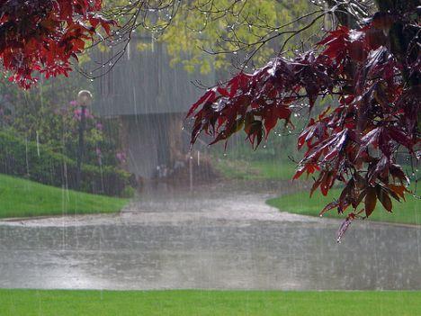 """دامنه های """"بارشها"""" از نیمه شرقی به جنوب ومرکز کشور می رسد /""""تشدید بارش ها""""و""""کاهش نسبی دما""""تا روز یکشنبه /دمای """"تهران"""" رو به کاهش"""