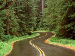 کاهش ۱۴ درصدی تردد در جادههای کشور