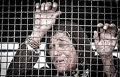 ایران عضوکمیته تدوین مقررات مقابله با خشونت علیه زنان سازمان ملل شد