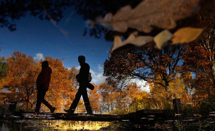 تصاویر دیدنی و حیرت انگیز از پاییز در سراسر جهان