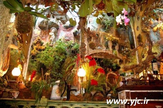 رستورانی مخصوص عاشقان گل و گیاه +عکس