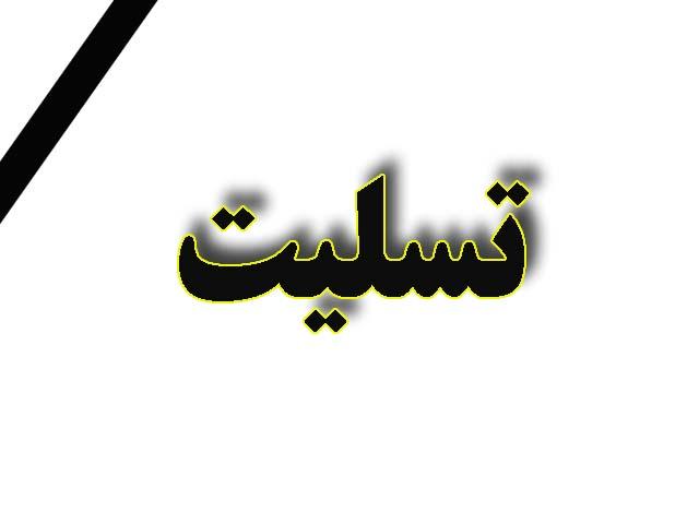 پیام تسلیت به بازماندگان و ملت ایران