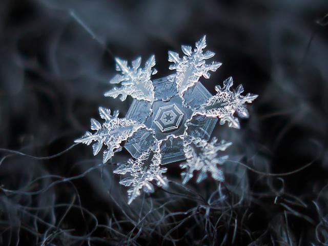 تصاویری شگفت انگیز و زیبا از کریستال های برف